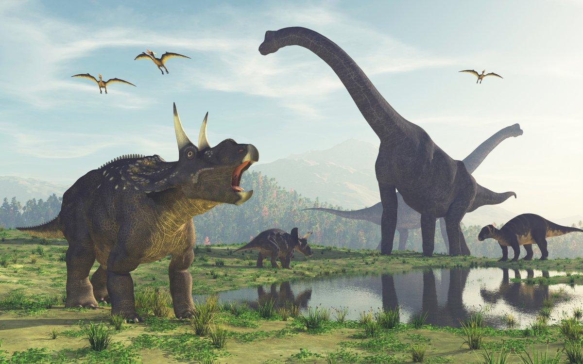 Dino-Destroying Asteroid